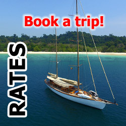 Book a trip on S/Y Aventure