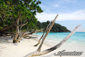 South Andaman Sea islands